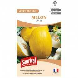 Graines de Melon Canari