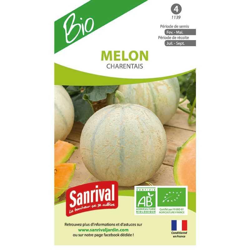 Graines de Melon Charentais BIO
