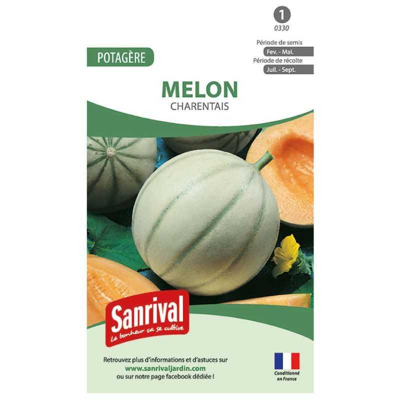 Graines de Melon Charentais