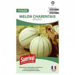 Graines de Melon charentais Stellio F1