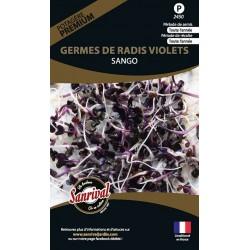 Germes de Radis Violets Sango