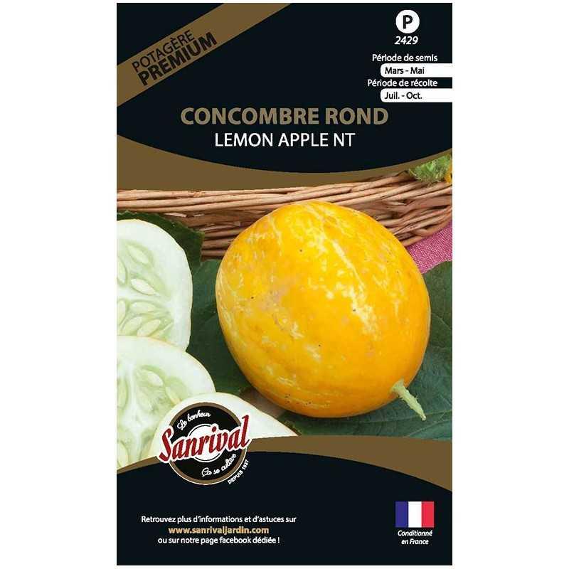 graines de Concombre Rond Lemon apple NT