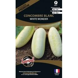graines de Concombre Blanc White Wonder