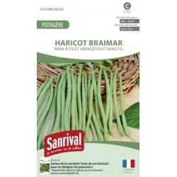Graines d'Haricot Braimar