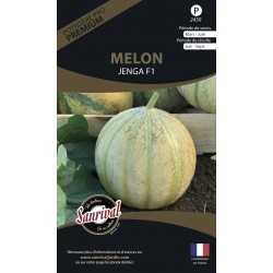 Graines de Melon Charentais Jenga HF1