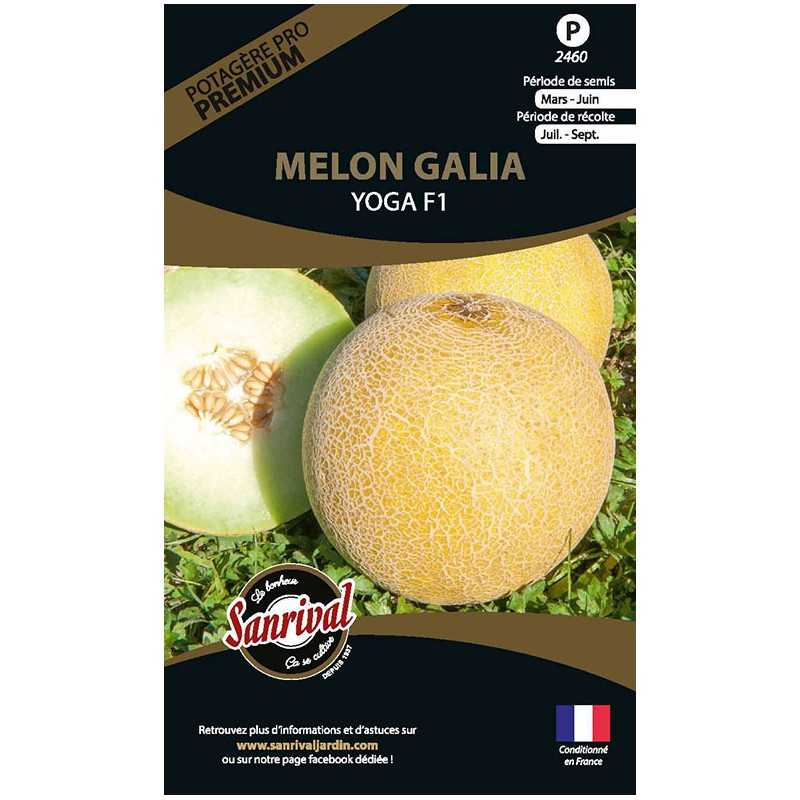 Graines de Melon Galia Yoga F1